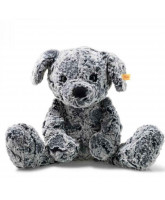 Miś Taffy dog